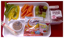 Elementary granola meal